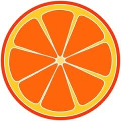fresh_orange_slice